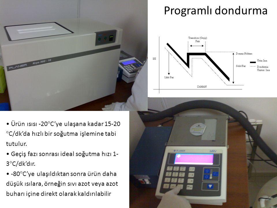 Programlı dondurma Ürün ısısı -20C'ye ulaşana kadar 15-20 C/dk'da hızlı bir soğutma işlemine tabi tutulur.