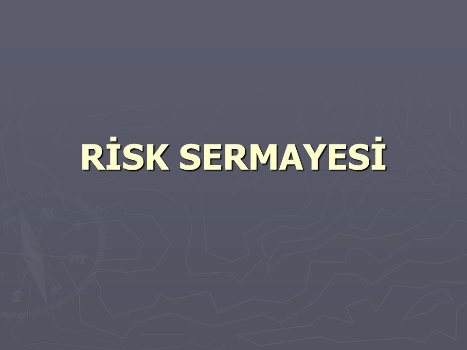 RİSK SERMAYESİ