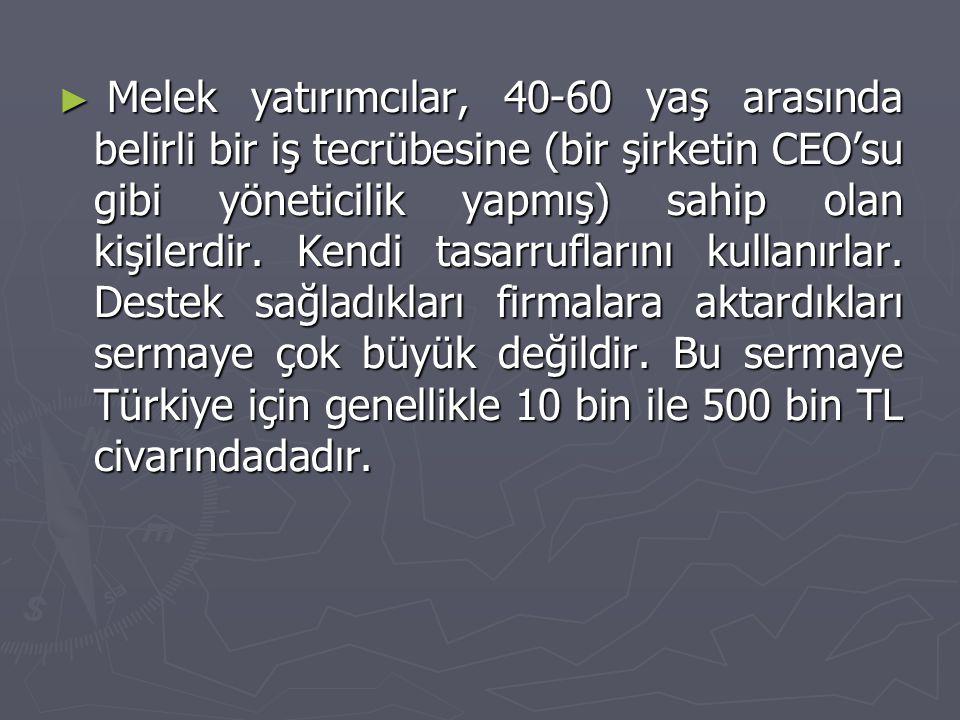 Melek yatırımcılar, 40-60 yaş arasında belirli bir iş tecrübesine (bir şirketin CEO'su gibi yöneticilik yapmış) sahip olan kişilerdir.