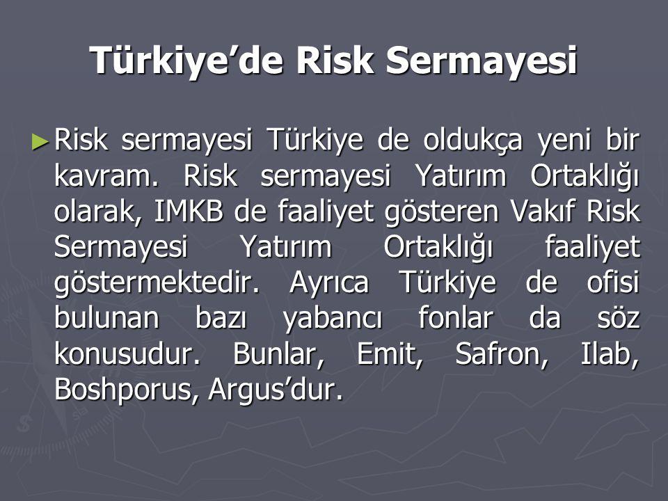Türkiye'de Risk Sermayesi