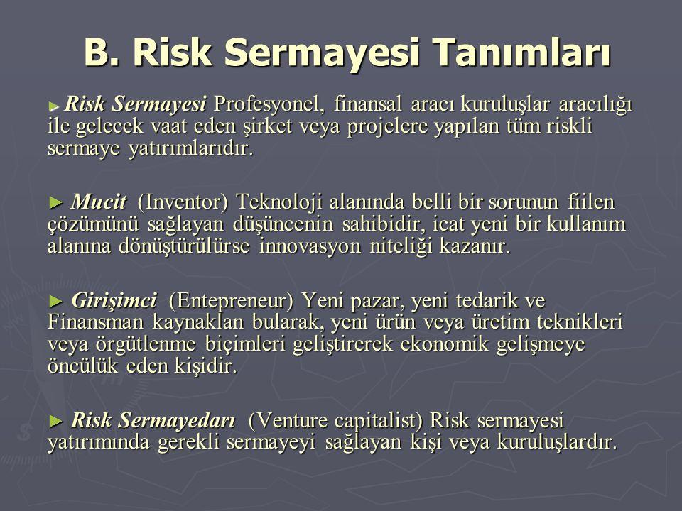 B. Risk Sermayesi Tanımları