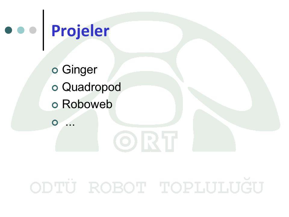 Projeler Ginger Quadropod Roboweb ...