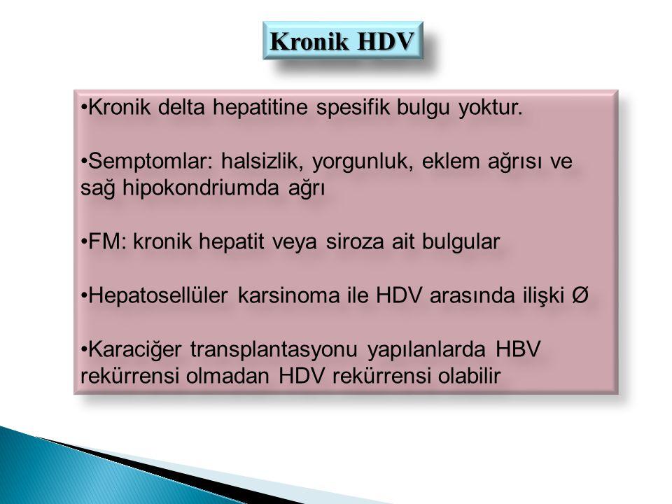 Kronik HDV Kronik delta hepatitine spesifik bulgu yoktur.