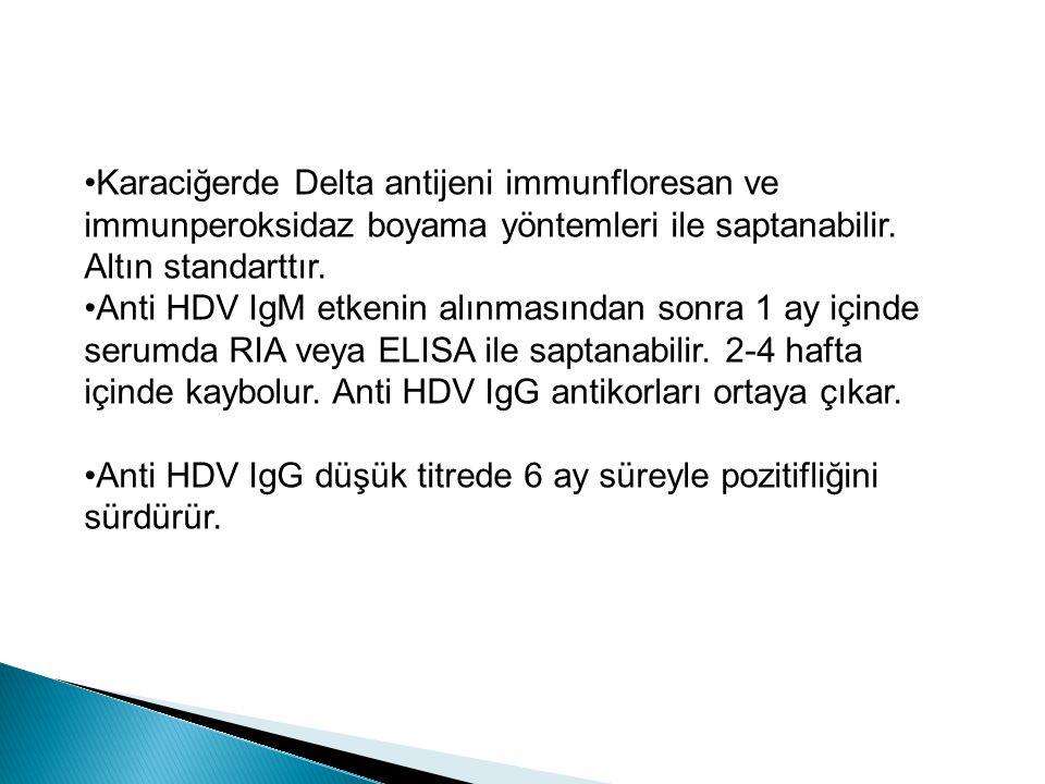Karaciğerde Delta antijeni immunfloresan ve immunperoksidaz boyama yöntemleri ile saptanabilir. Altın standarttır.