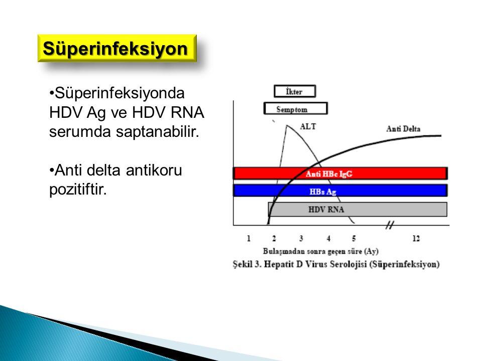 Süperinfeksiyon Süperinfeksiyonda HDV Ag ve HDV RNA serumda saptanabilir.