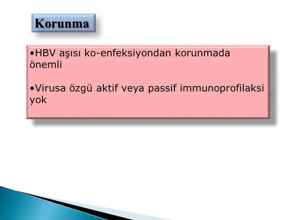 Korunma HBV aşısı ko-enfeksiyondan korunmada önemli
