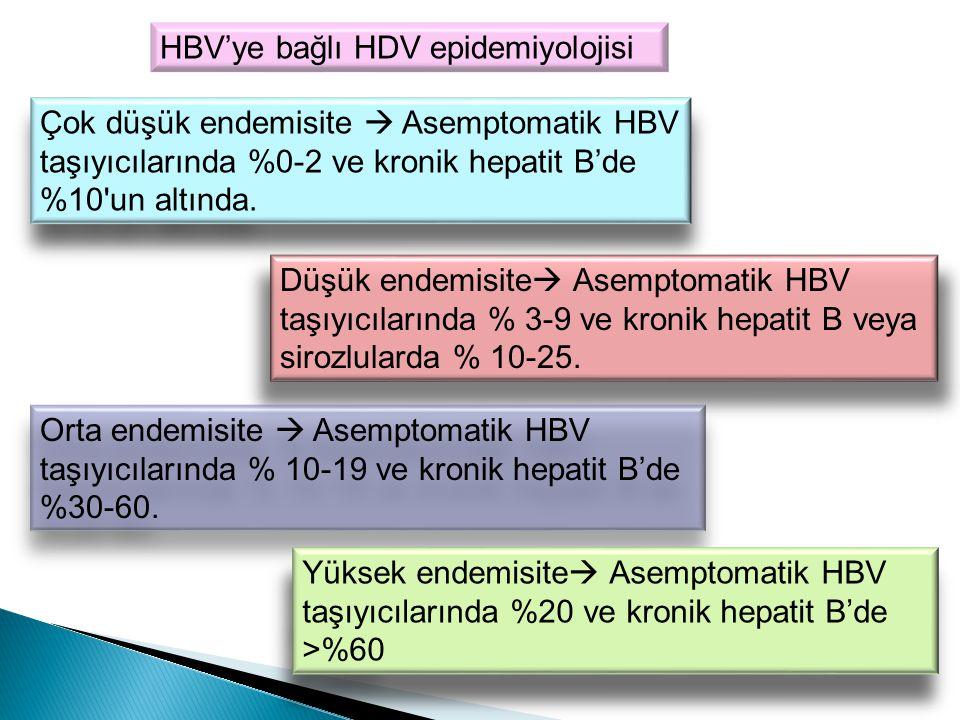 HBV'ye bağlı HDV epidemiyolojisi