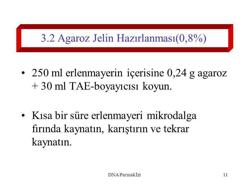 3.2 Agaroz Jelin Hazırlanması(0,8%)