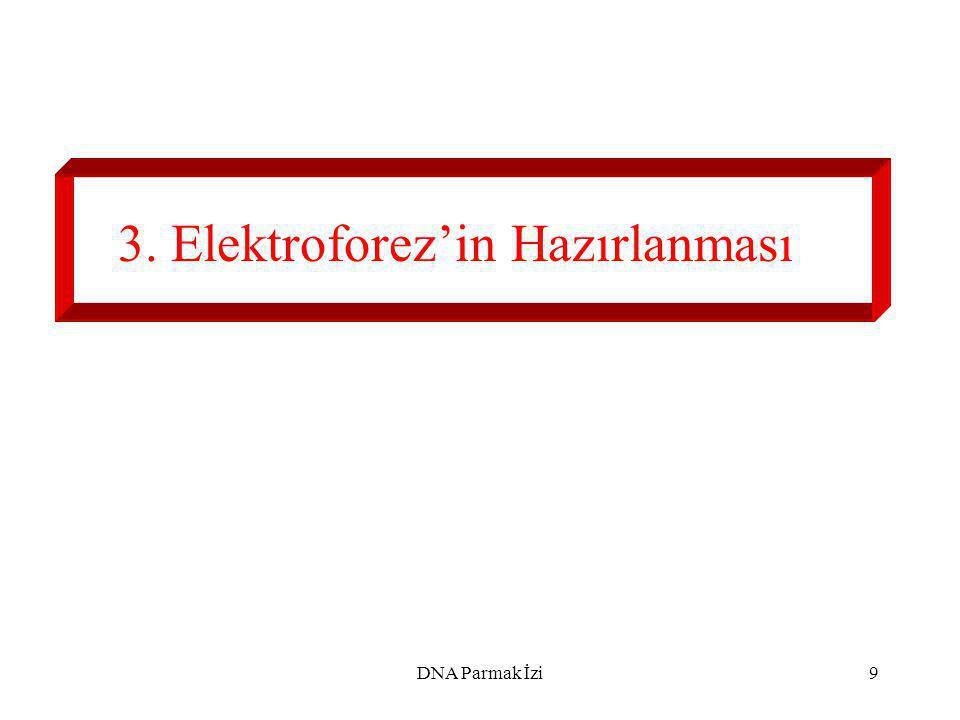 3. Elektroforez'in Hazırlanması