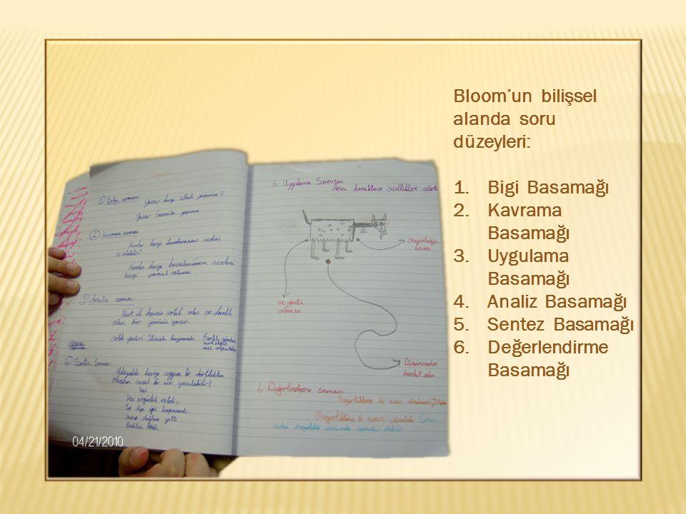 Bloom'un bilişsel alanda soru düzeyleri: