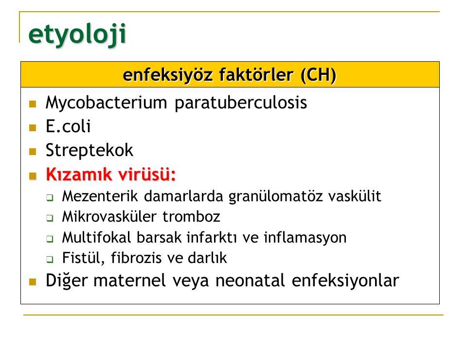 enfeksiyöz faktörler (CH)