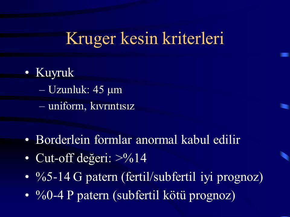 Kruger kesin kriterleri