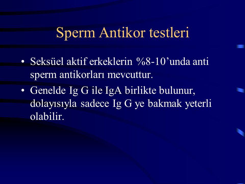 Sperm Antikor testleri