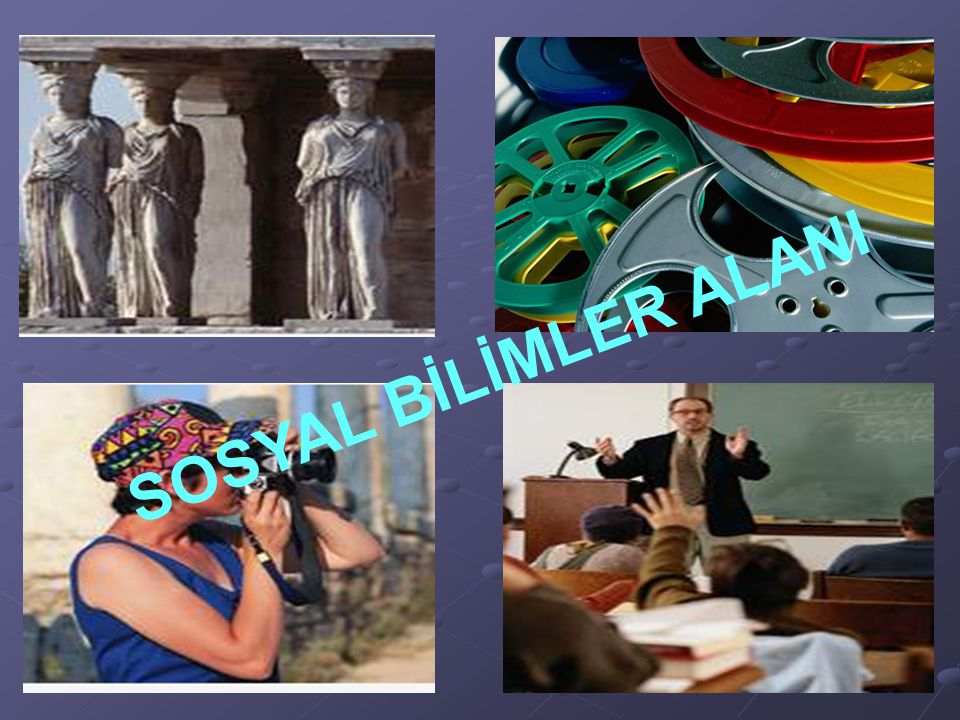 SOSYAL BİLİMLER ALANI