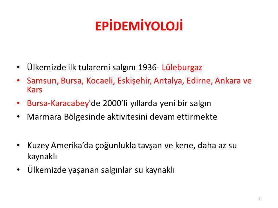 EPİDEMİYOLOJİ Ülkemizde ilk tularemi salgını 1936- Lüleburgaz