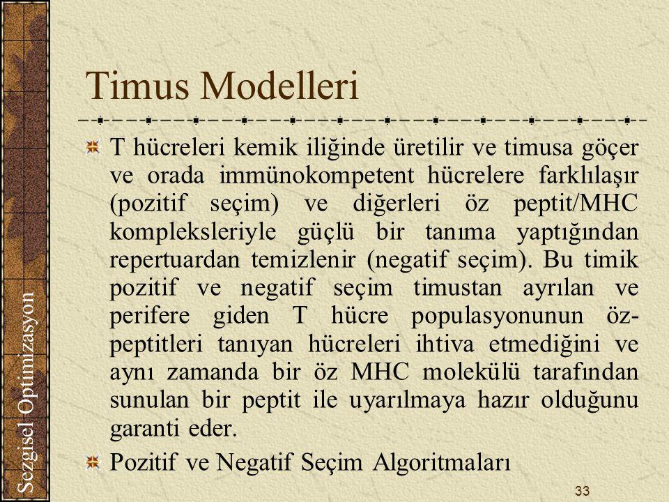 Timus Modelleri
