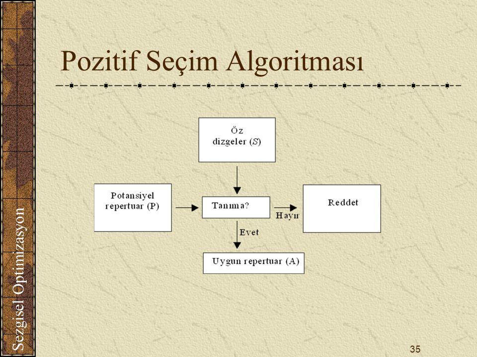 Pozitif Seçim Algoritması