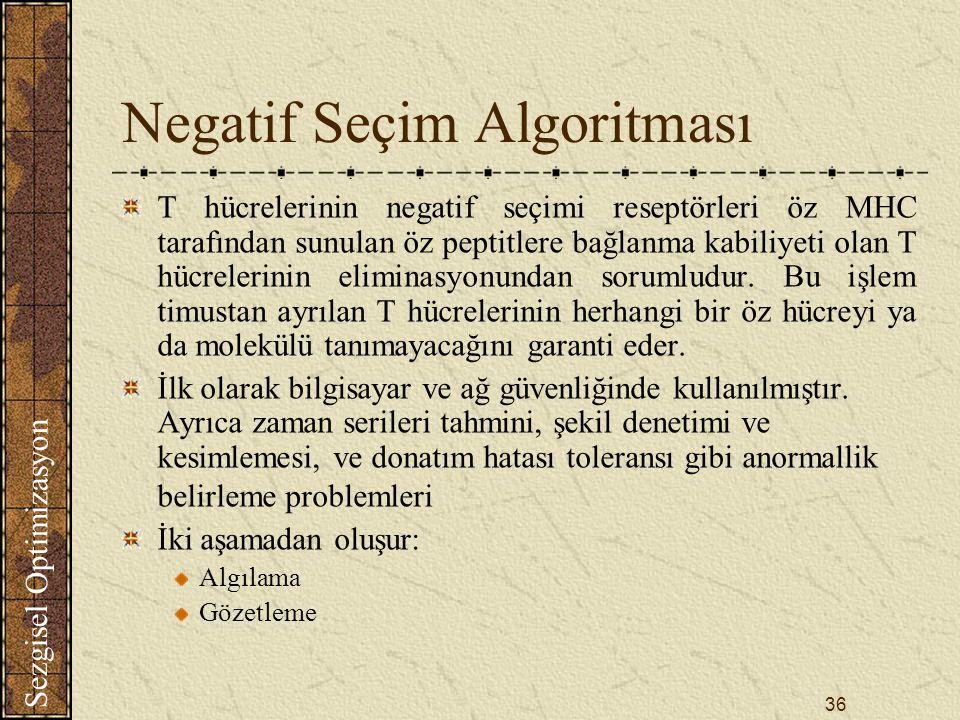 Negatif Seçim Algoritması