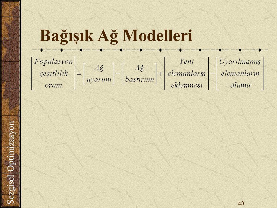 Bağışık Ağ Modelleri