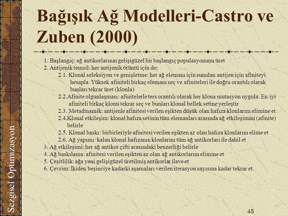 Bağışık Ağ Modelleri-Castro ve Zuben (2000)