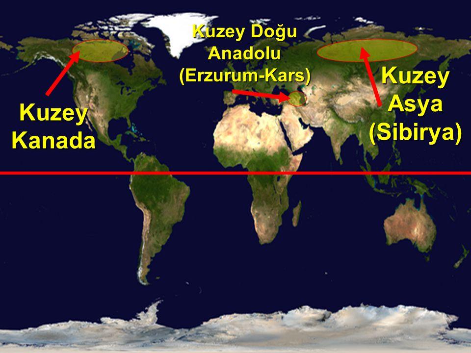 Kuzey Doğu Anadolu (Erzurum-Kars)