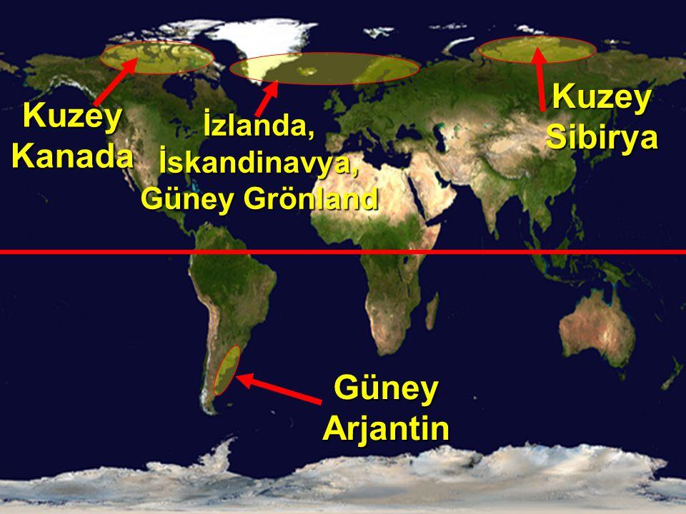 İzlanda, İskandinavya, Güney Grönland