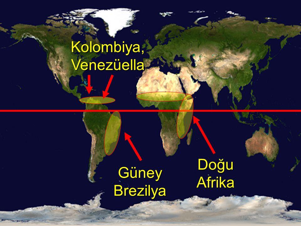 Kolombiya, Venezüella Doğu Afrika Güney Brezilya