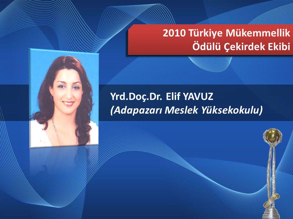 2010 Türkiye Mükemmellik Ödülü Çekirdek Ekibi