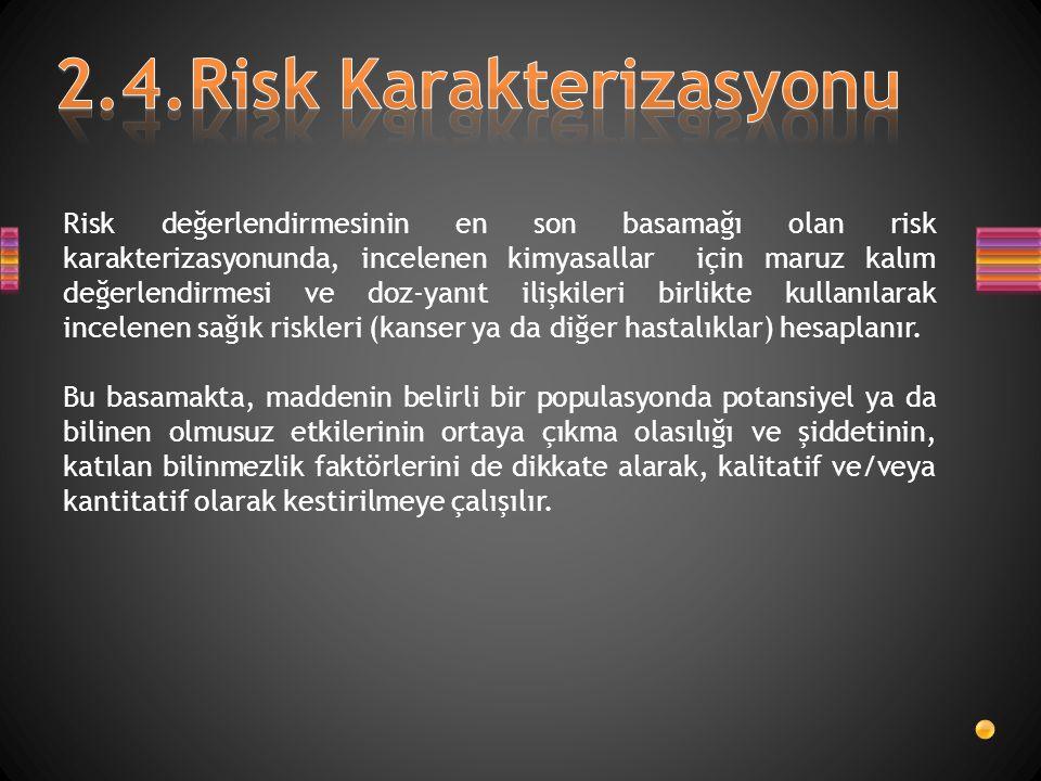 2.4.Risk Karakterizasyonu