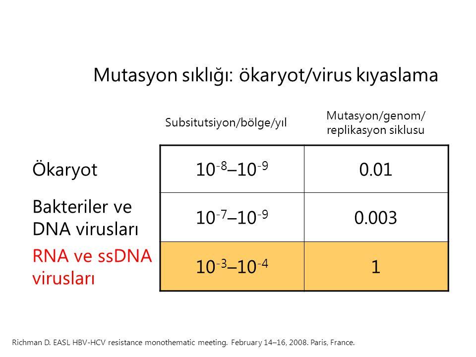 Mutasyon sıklığı: ökaryot/virus kıyaslama
