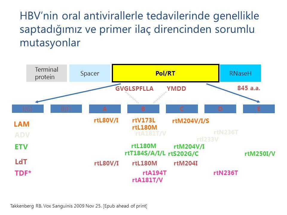 HBV'nin oral antivirallerle tedavilerinde genellikle saptadığımız ve primer ilaç direncinden sorumlu mutasyonlar