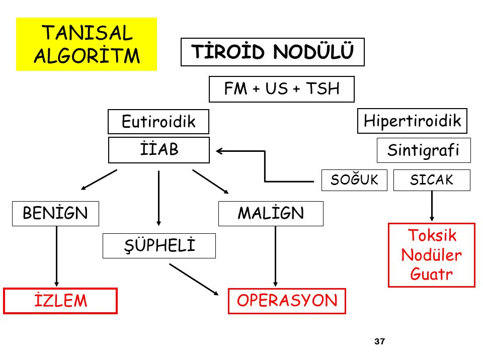 TANISAL ALGORİTM TİROİD NODÜLÜ FM + US + TSH Eutiroidik Hipertiroidik