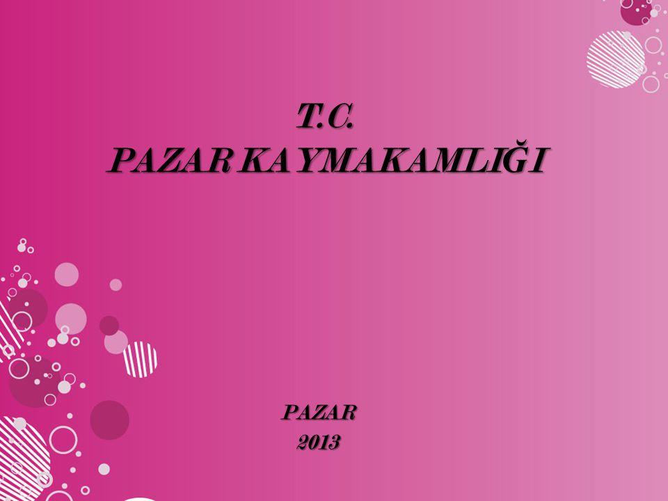 T.C. PAZAR KAYMAKAMLIĞI PAZAR 2013