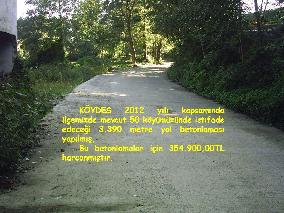 KÖYDES 2012 yılı kapsamında ilçemizde mevcut 50 köyümüzünde istifade edeceği 3.390 metre yol betonlaması yapılmış,