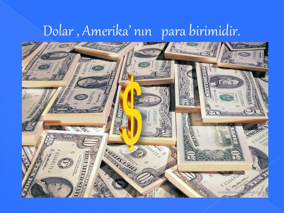 Dolar , Amerika' nın para birimidir.