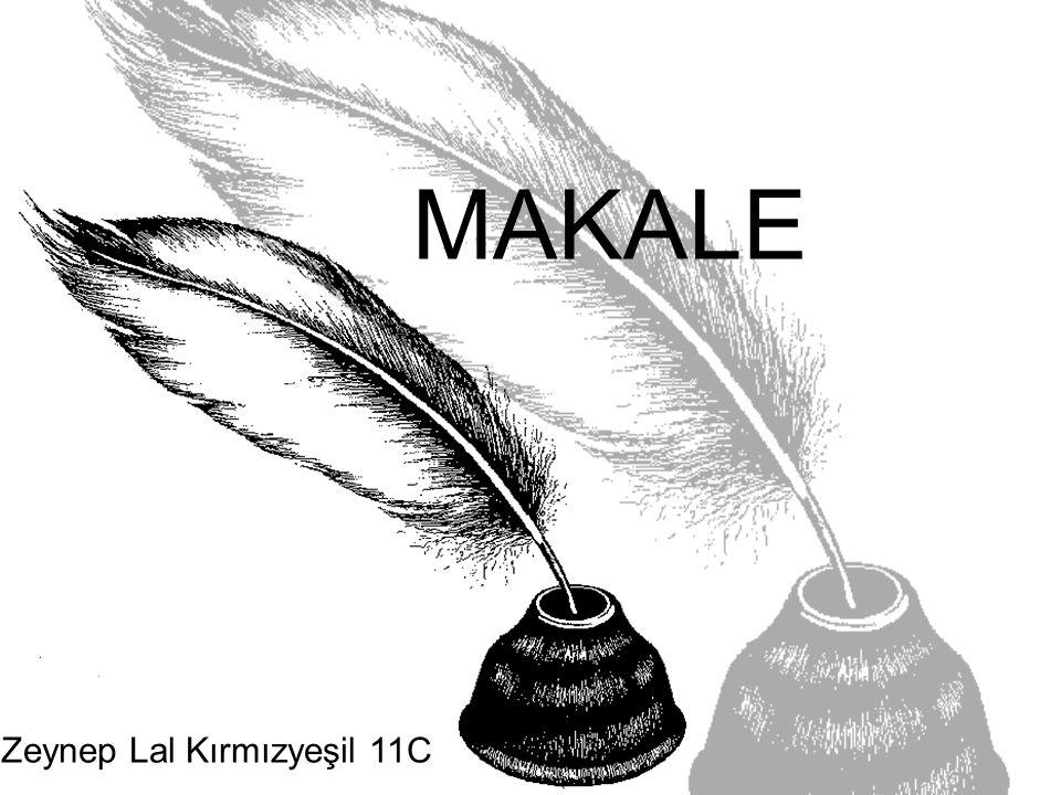 Zeynep Lal Kırmızyeşil 11C