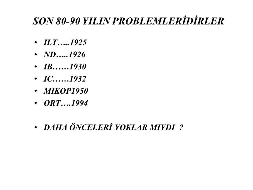 SON 80-90 YILIN PROBLEMLERİDİRLER