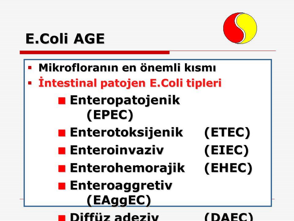 E.Coli AGE Enteropatojenik (EPEC) Enterotoksijenik (ETEC)