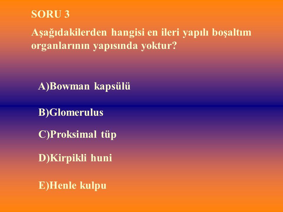 SORU 3 Aşağıdakilerden hangisi en ileri yapılı boşaltım organlarının yapısında yoktur A)Bowman kapsülü.