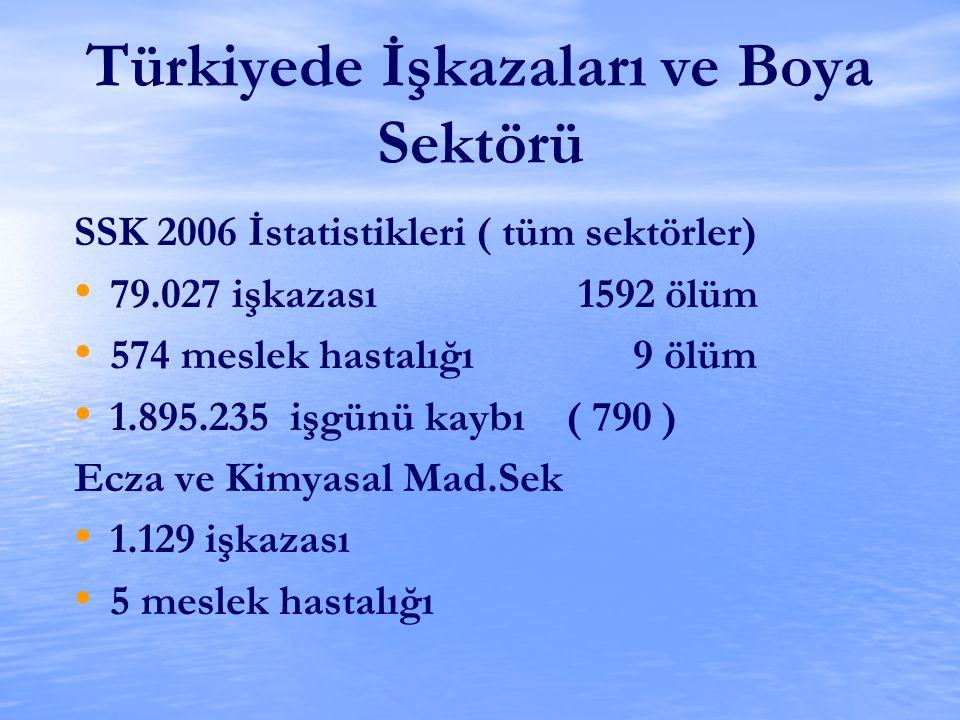 Türkiyede İşkazaları ve Boya Sektörü