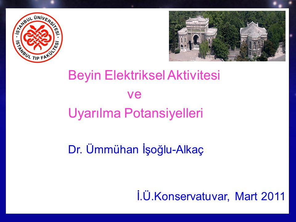 Prof.Dr. Ümmühan İşoğlu-Alkaç