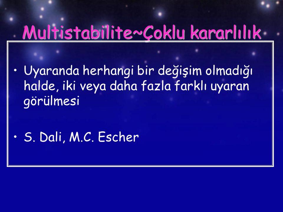 Multistabilite~Çoklu kararlılık