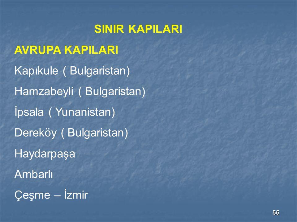 SINIR KAPILARI AVRUPA KAPILARI. Kapıkule ( Bulgaristan) Hamzabeyli ( Bulgaristan) İpsala ( Yunanistan)