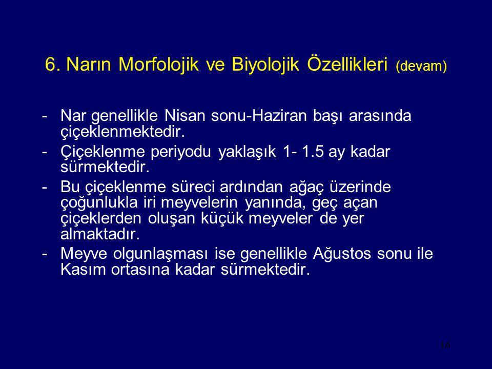 6. Narın Morfolojik ve Biyolojik Özellikleri (devam)