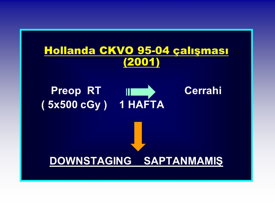 Hollanda CKVO 95-04 çalışması (2001) DOWNSTAGING SAPTANMAMIŞ
