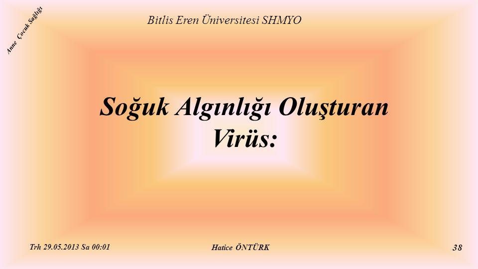 Soğuk Algınlığı Oluşturan Virüs:
