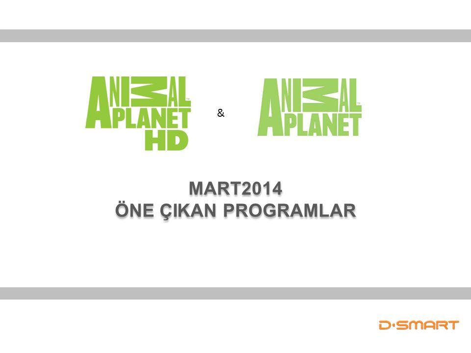 MART2014 ÖNE ÇIKAN PROGRAMLAR