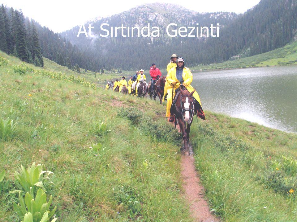 At Sırtında Gezinti 32