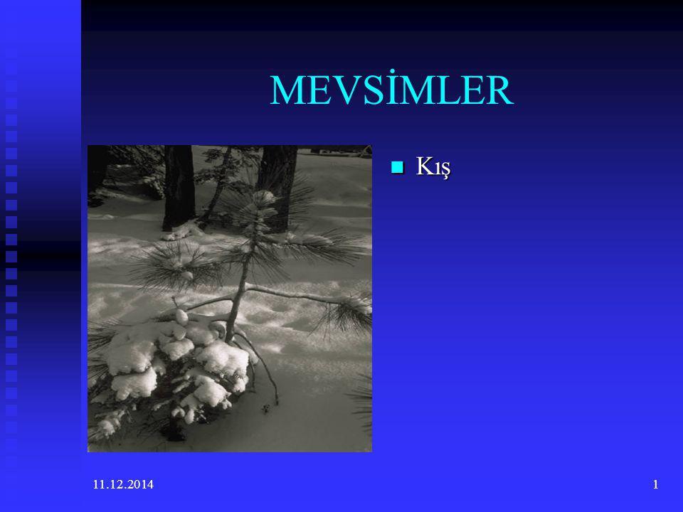 MEVSİMLER Kış 07.04.2017