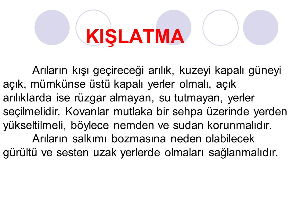 KIŞLATMA
